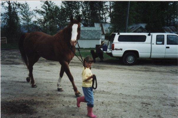 dillon_mt_horses