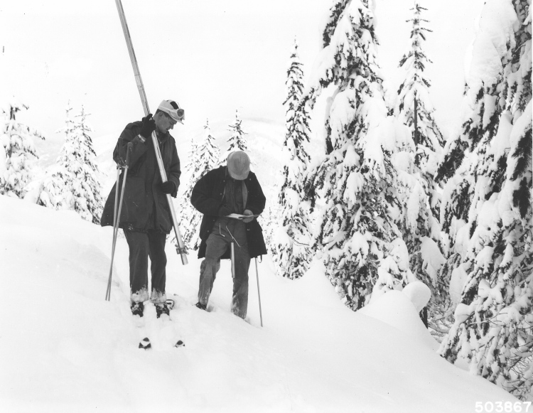 measuring_snow_1958_coeurdlane_natl_forest